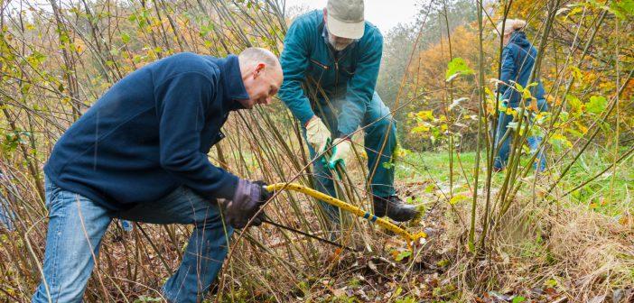Vrijwilligers zetten zich in op de Natuurwerkdag